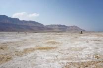 Strand am toten Meer mit Salz überzogen