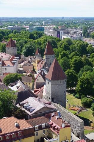 Reste der Stadtmauer in Estland