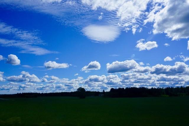 Weiter Horizont in Estland
