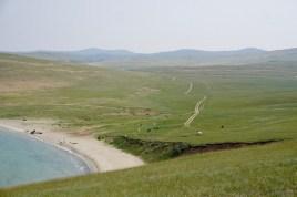 Wege ins Niemandsland und grasende Kühe