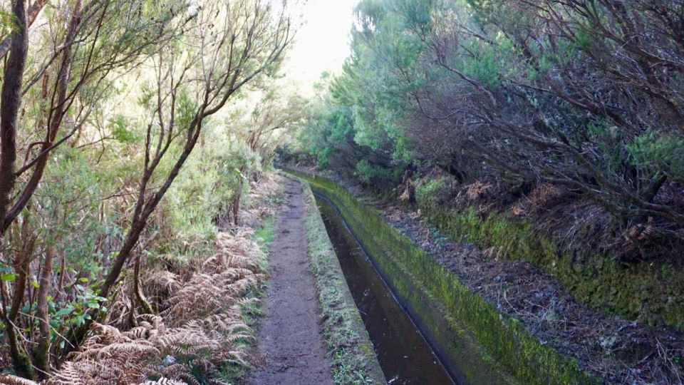 Levada do Alcerim Madeira