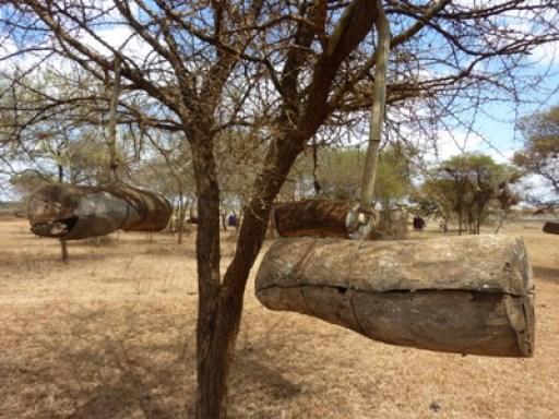 2011-07_tanzania_loiborsoit_collecting-honey.JPG