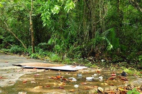 2013-02-01_trinidad-scotland-bay-clean-up-no-pile.JPG
