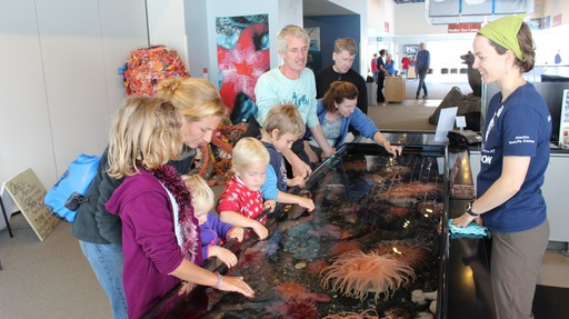 2013-08-10_alaska-seward_sealife center 1.JPG