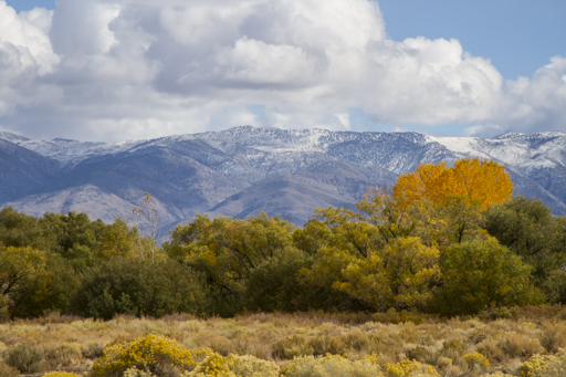 2014-11-01_usa-bishop_snow-topped-mountains.jpg