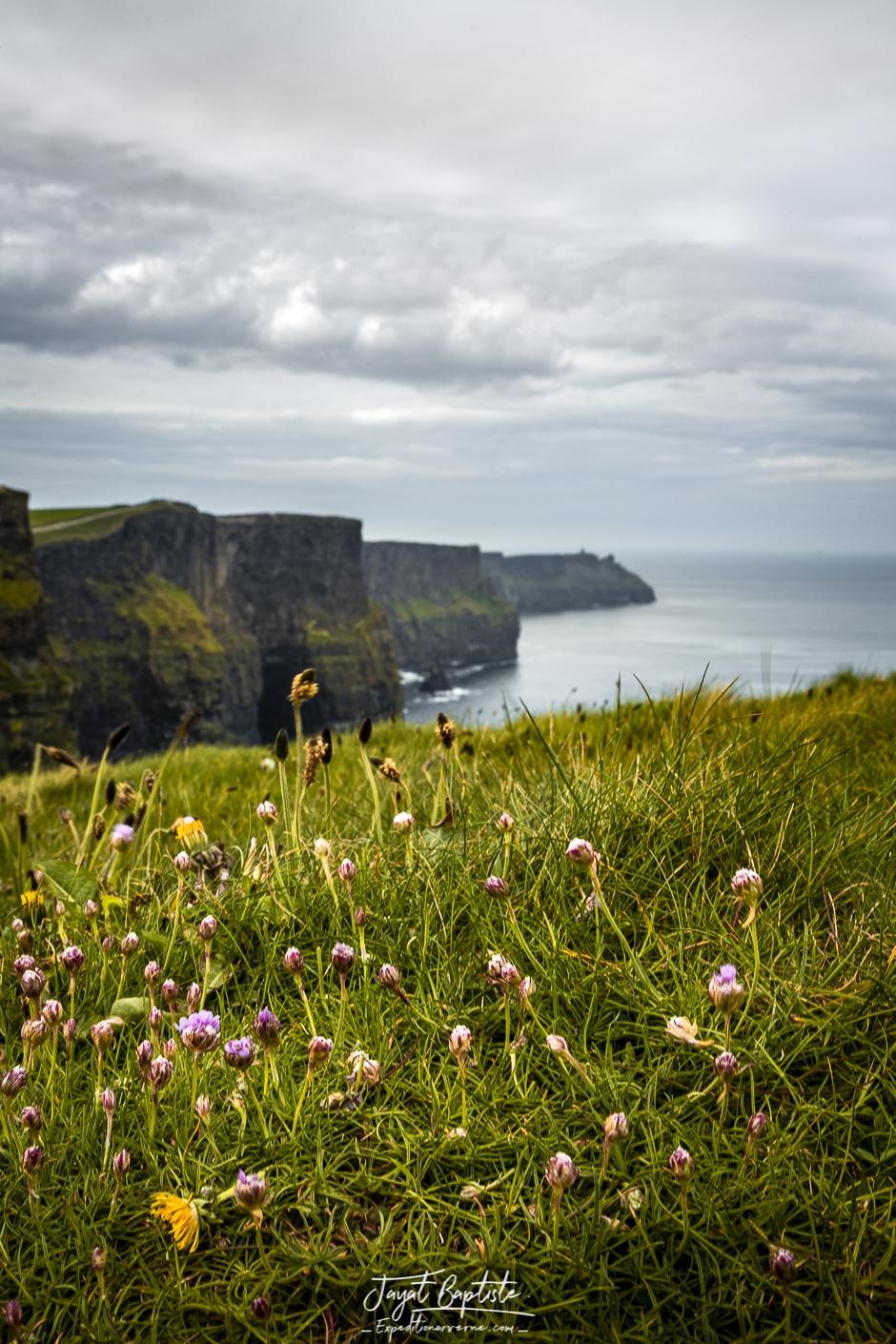 Expeditionarverne-Irlande©050