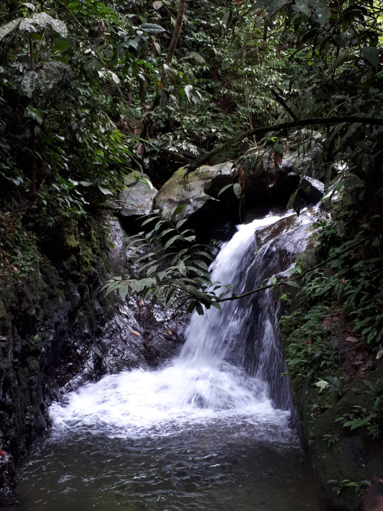 Cascade chaude jungle Sumatra