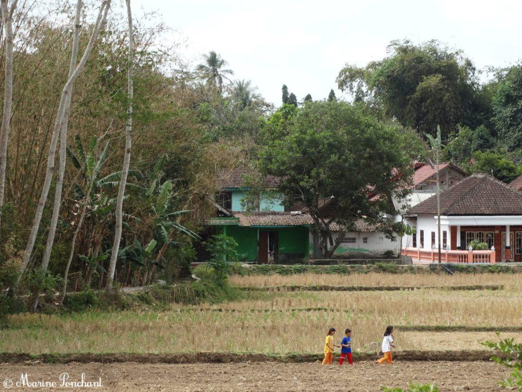 Enfants jouant dans les cultures