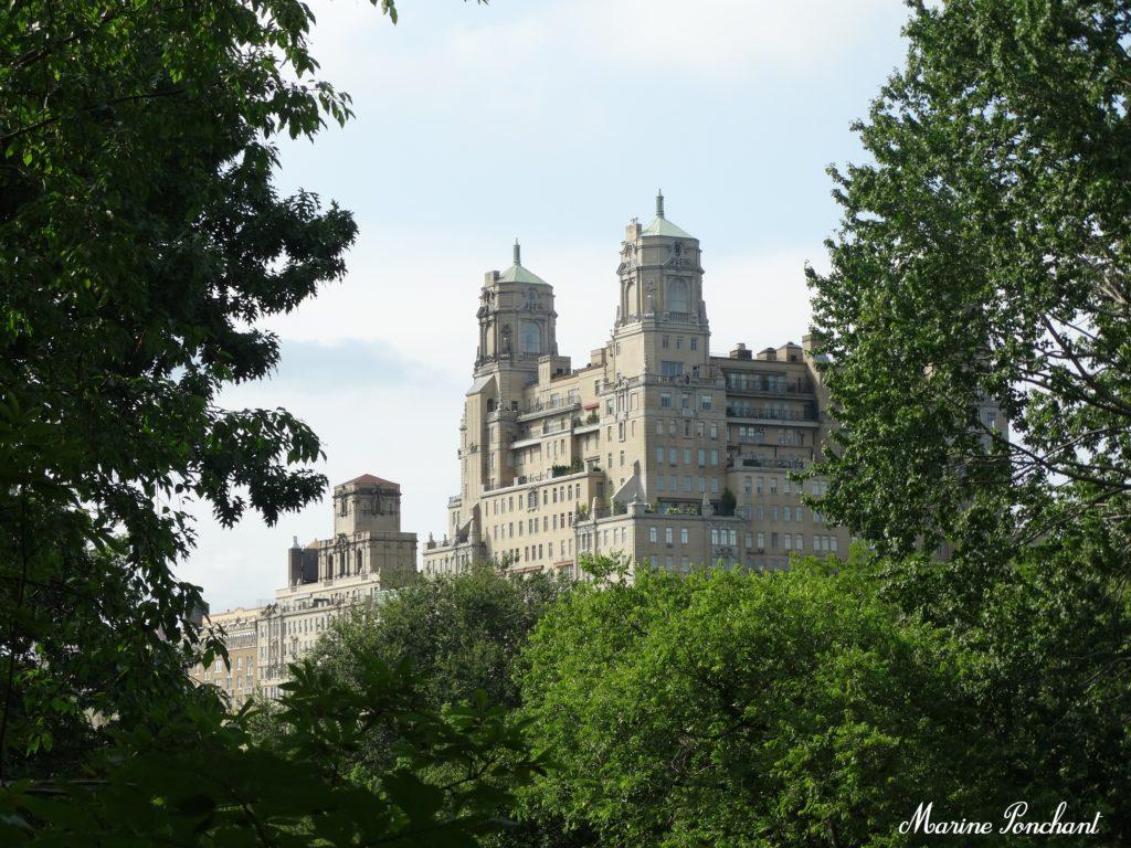 Vu des bâtiments depuis Central Park
