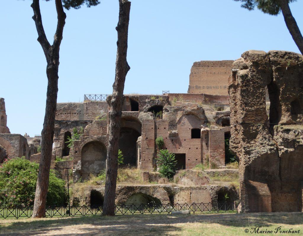 Palatin et forum
