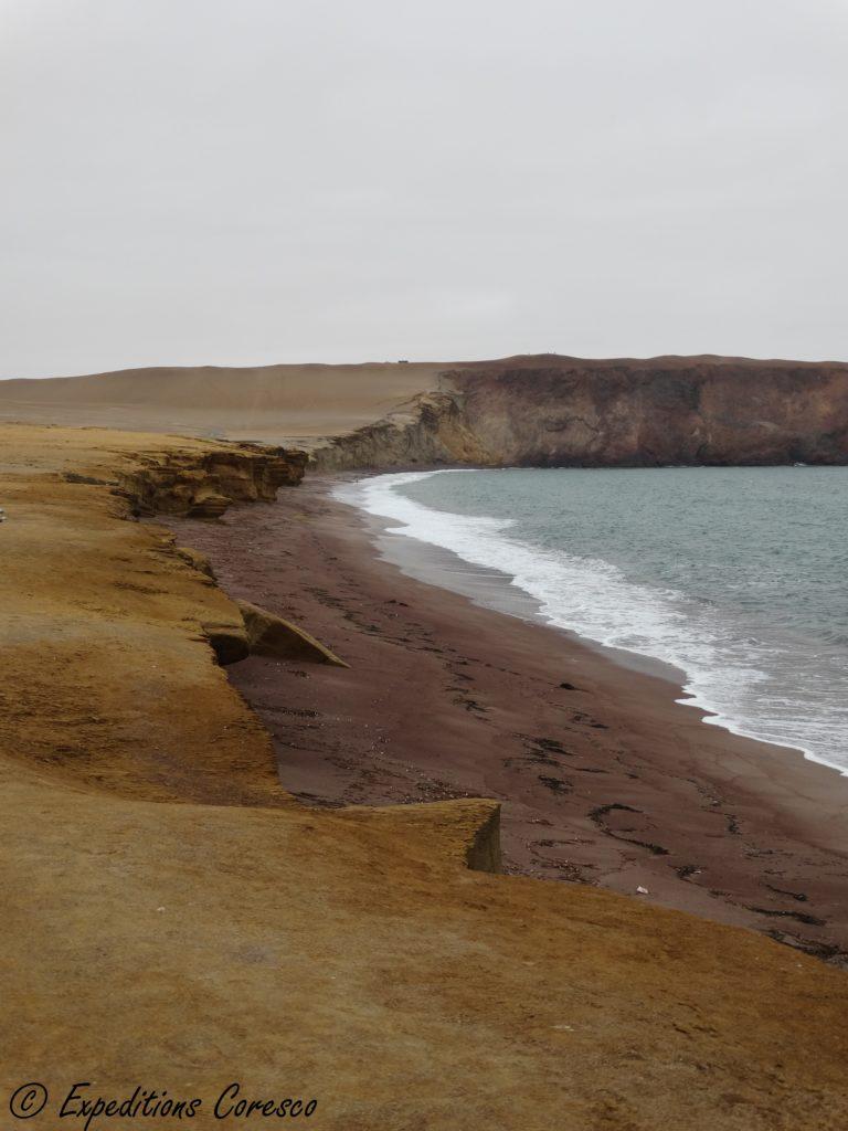 Réserve Paracas Pérou