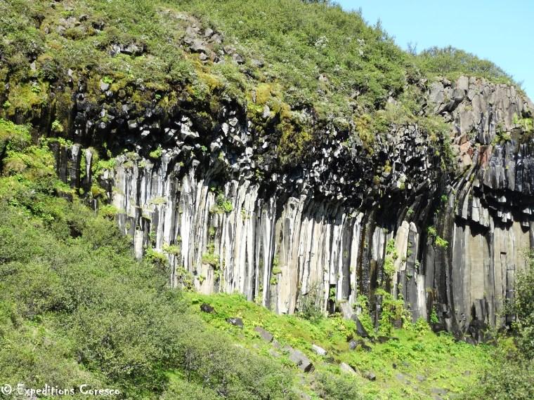 Orgues basaltiques Svartifoss Islande