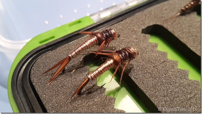 First Attempt: Wired Stonefly Nymph