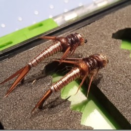 Wired Stonefly Nymph