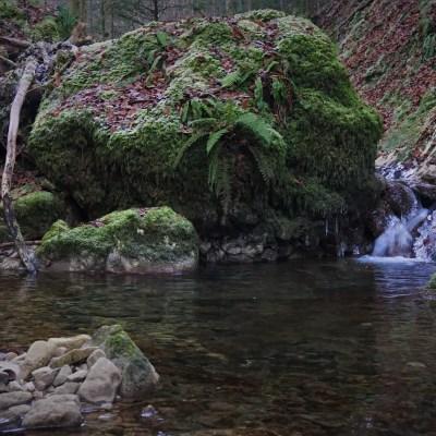Huge stone blocking the small creek in the Jura mountain