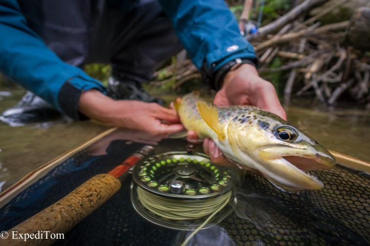 Robin Melliger's PB trout on the fly
