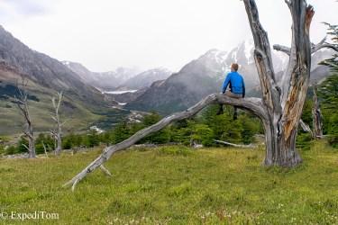 Patagonian wilderness