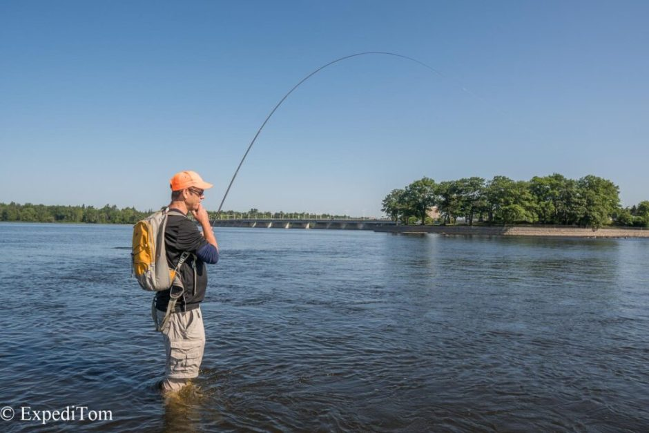 Bass Fly Fishing in Ottawa Canada