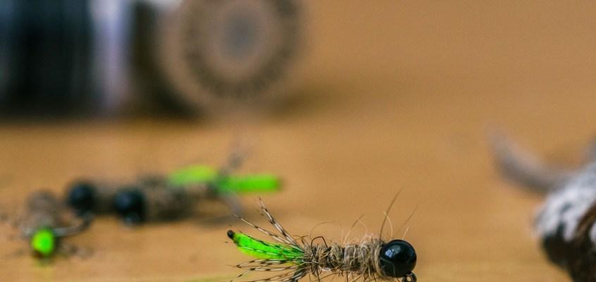 Minimalistic Fly Tying: Peeping Caddis Nymph