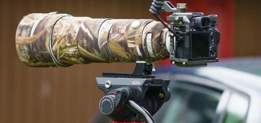 Wildlife videography setup