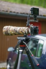 Wildlife videography setup