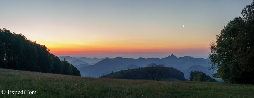 Wildlife observation in the Jura mountains at the crack of dawn