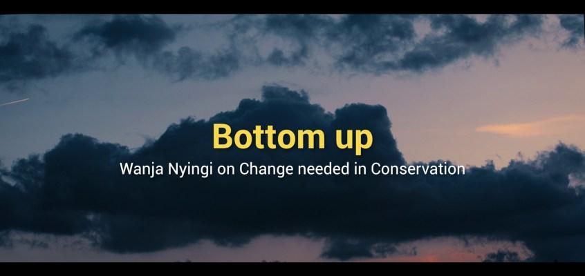 Bottom Up: A Film by Jonas Steiner