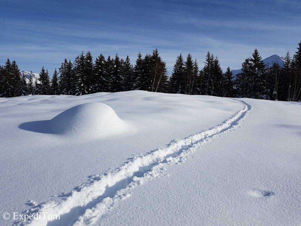 Snowshoe trek without snowshoes