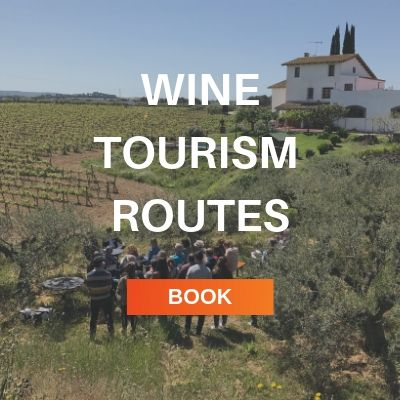 wine tourism routes