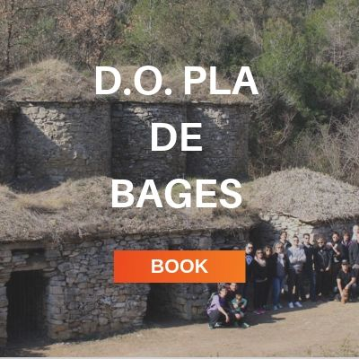 DO Pla de Bages