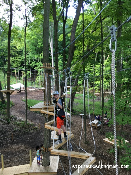 A grand family adventure in the trees the easy course