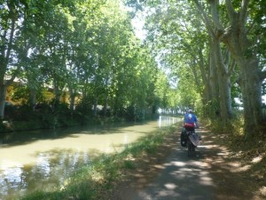 Gorgeous light along the Canal du Midi