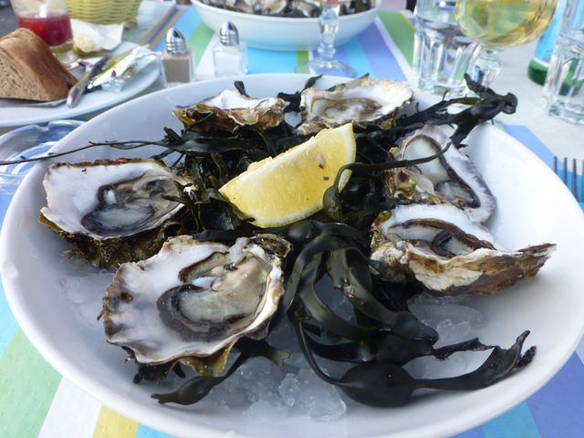 Oysters from the Bay of Thau