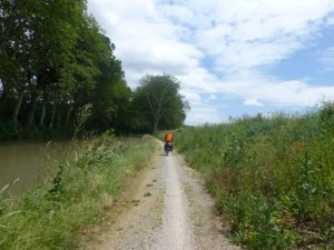 Narrow rutted paths with tall grass past Trebes