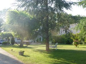 View of the front garden from entrance