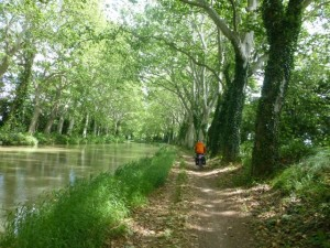 Scenery along the Canal du Midi