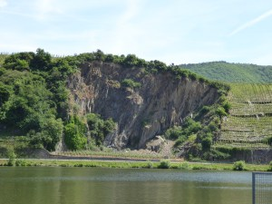 Vineyards with incredible vertical slope
