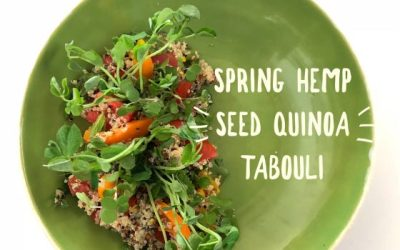 A New View of Healthy Eating: Healthy Plant-Based Recipes by Melanie Albert: Spring Hemp Seed Quinoa Tabouli