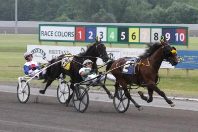 Harness Racing 1