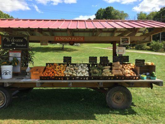 Huizinga Farmstand Candor Tioga County NY Farm Stand