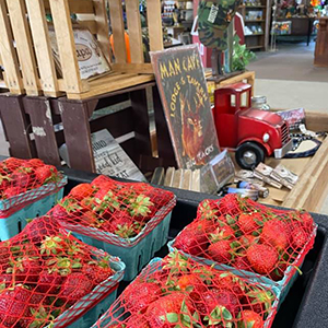 Iron-Kettle-Farm-Candor-Strawberries-and-Gifts-Tioga-County-NY