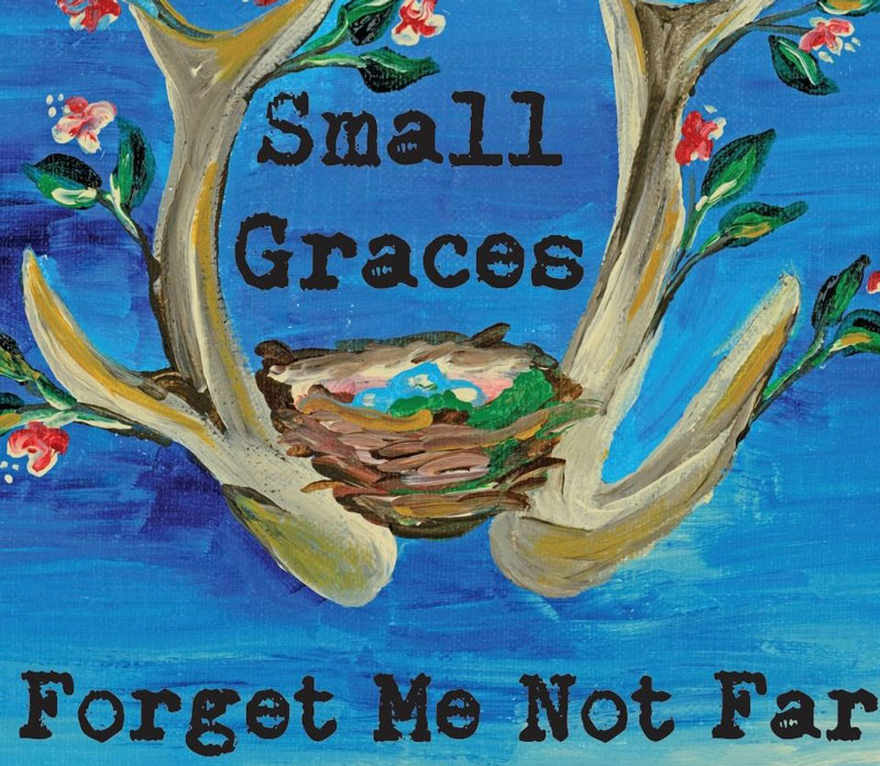 Small-Graces-at-Forget-Me-Not-Farm-Painted-Sign