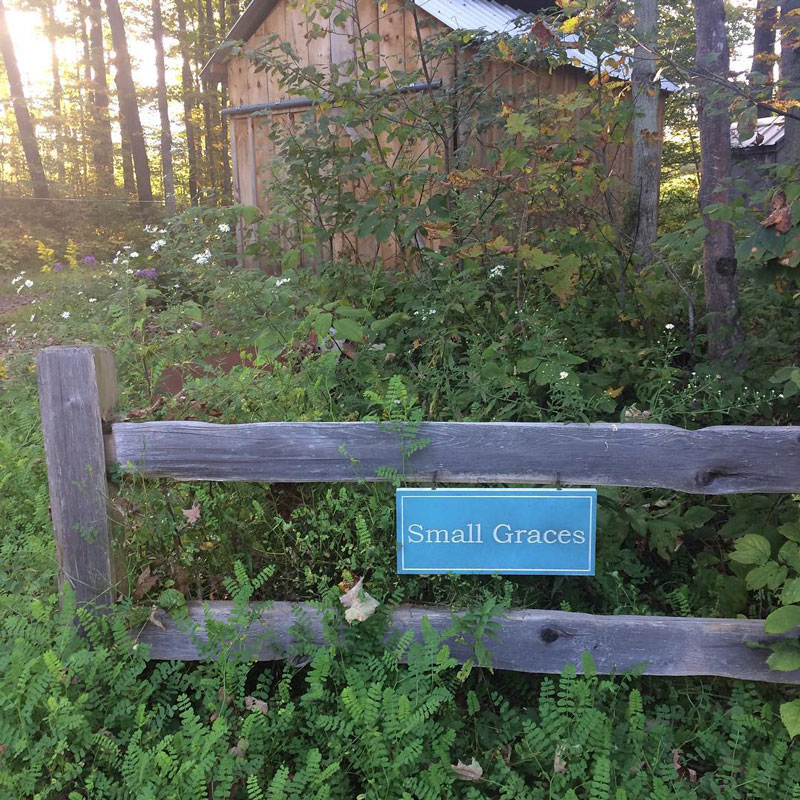 Small-Graces-at-Forget-Me-Not-Farm-Sign