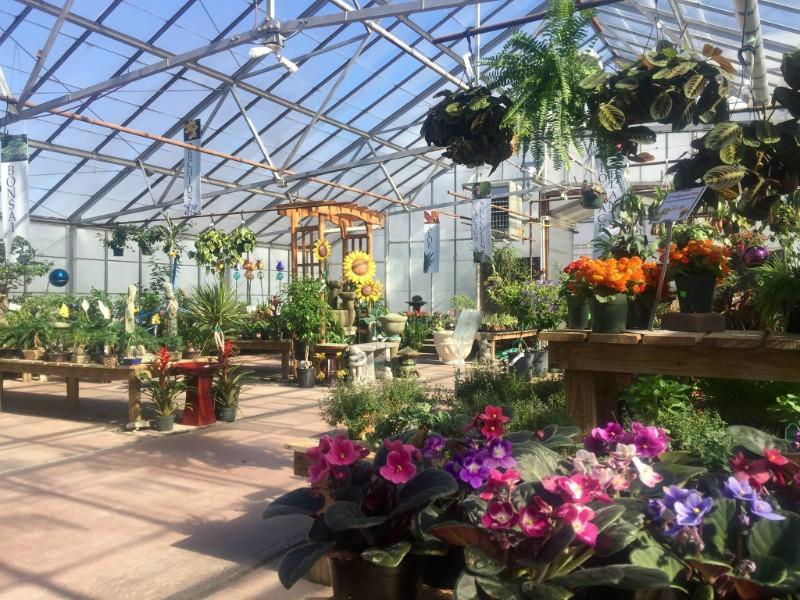 Tioga Gardens