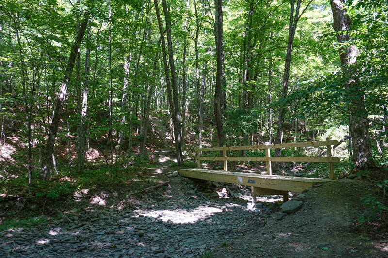 Two-Rivers-State-Park-Waverly-NY-Trail-Bridge