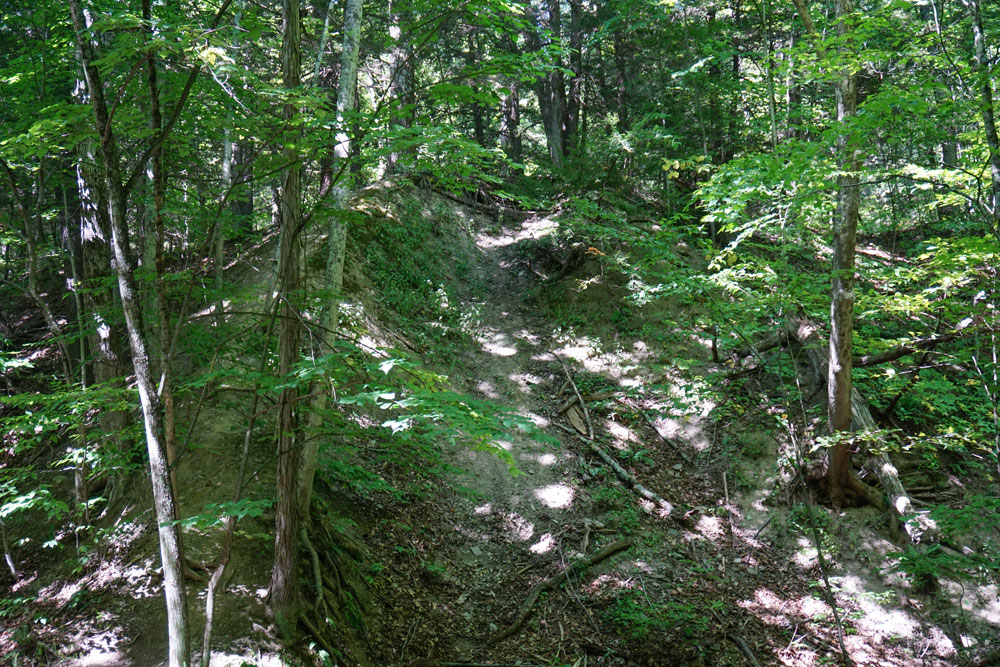 Two-Rivers-State-Park-Waverly-NY-Trail-Hill