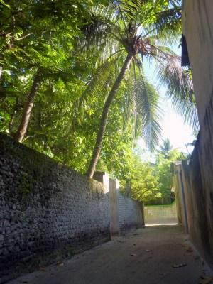tropicalstreets