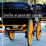Ruta en coche de caballo por Sevilla