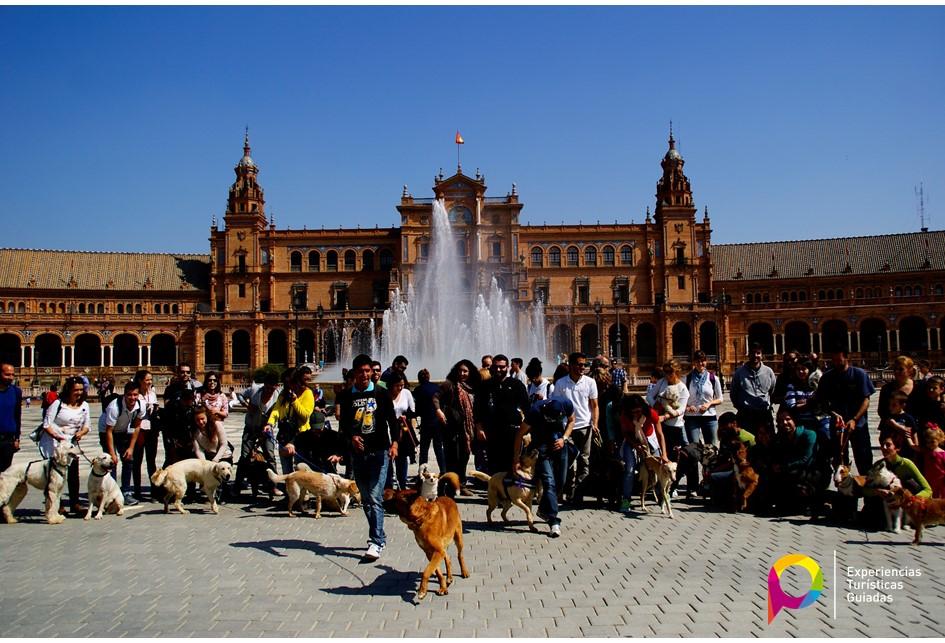 Guía turístico privado en Sevilla