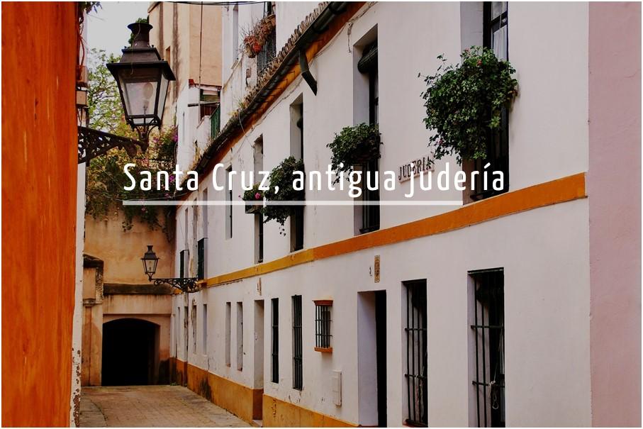 Tour por el barrio de Santa Cruz de Sevilla